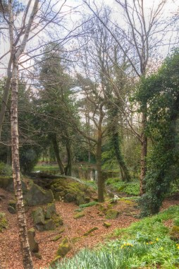 Pond at Warley Place