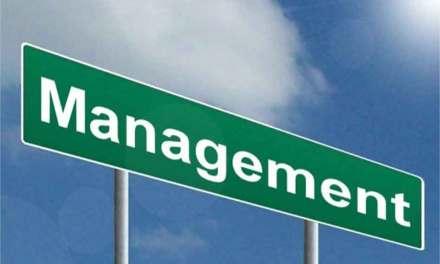 Transformer durablement l'entreprise avec le Green Management.