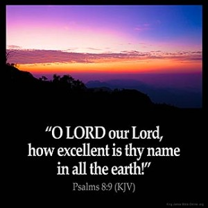 Psalms_8-9 thy name