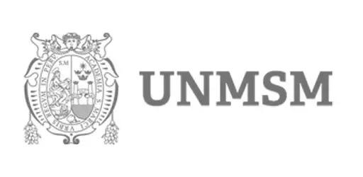 unmsm