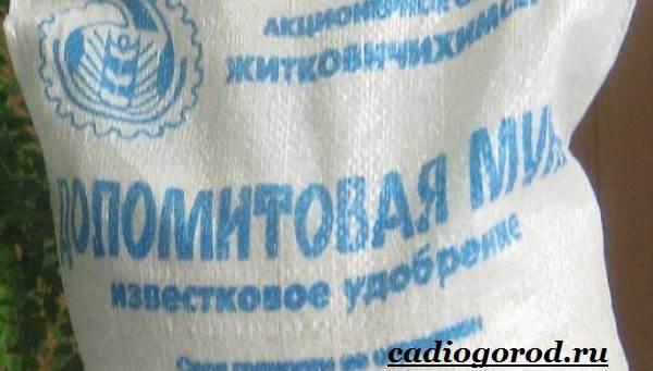 Доломитовая-мука-Свойства-состав-и-применение-доломитовой-муки-11
