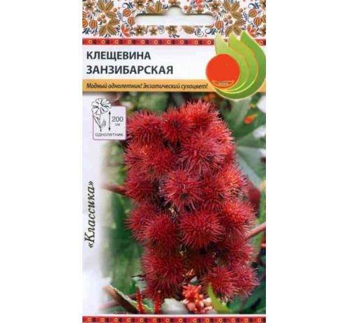 Клещевина-растение-Описание-особенности-виды-и-уход-за-клещевиной-6