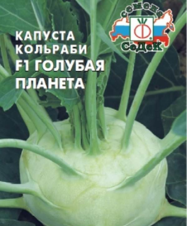 Капуста-кольраби-Описание-особенности-виды-и-выращивание-кольраби-9