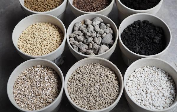 Вермикулит-для-растений-Для-чего-нужен-как-применять-и-сколько-стоит-вермикулит-1