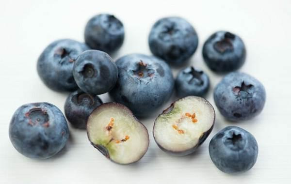 Голубика-ягода-Описание-особенности-полезные-свойства-и-выращивание-голубики-14