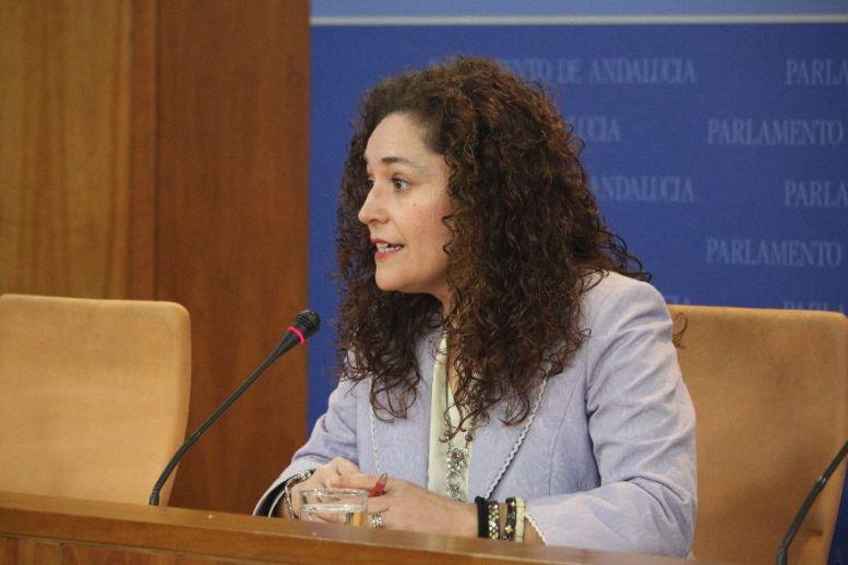 Inmaculada Nieto, en comisión en el Parlamento andaluz