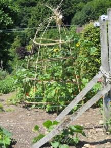 The Kitchen Garden, Chartwell, Kent, UK