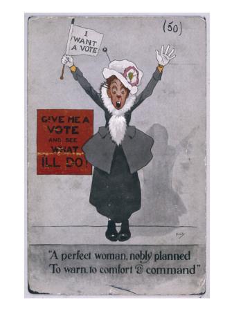 Womens Suffrage Amendment
