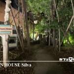 【グリーンハウス シルバ】三宮おすすめの人気カフェ!ランチもディナーも充実!