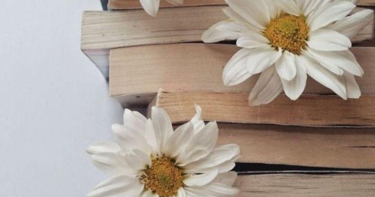 Poezia – terapia prin cuvânt și iubire