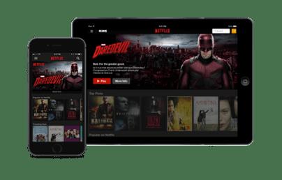 Prix Netflix 2 ecrans
