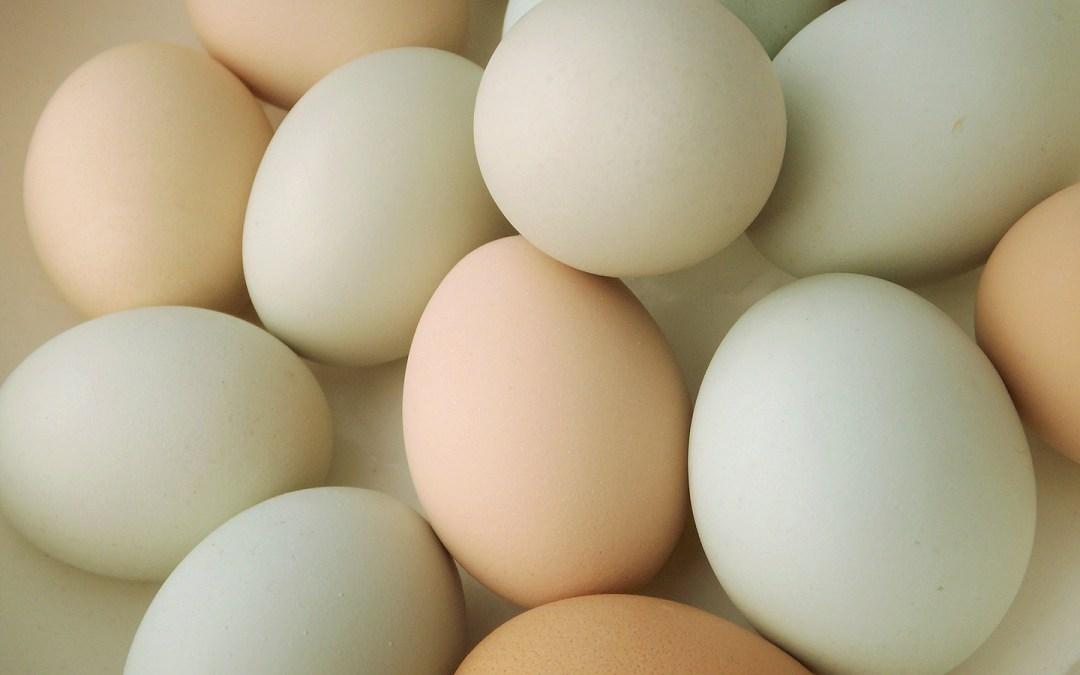 Easter Egg Overdose