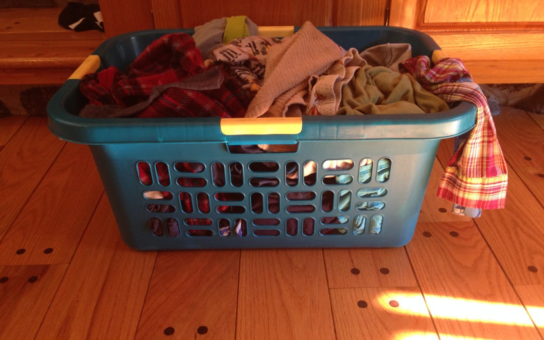 The Bad Mom's Guide to Laundry: How YOU Can Minimize Washing and Save the Environment