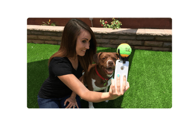 Tirar selfie com seu cãozinho está difícil? Talvez não mais