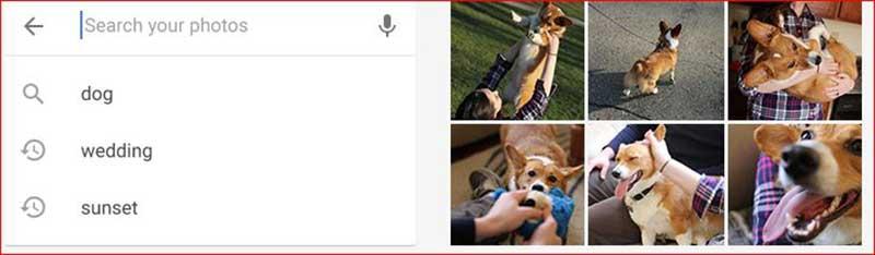 Google Fotos Busqueda - Cambian los términos de Google Fotos ¿El fin del almacenamiento gratuito?