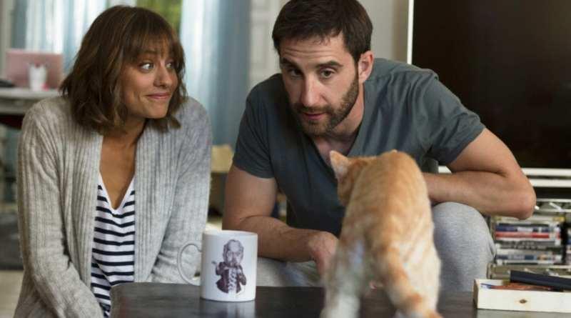 Miamor perdido: como el gato de Schrödinger