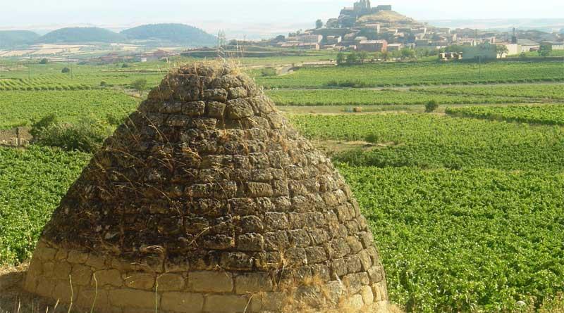 excursión enológica al Ebro
