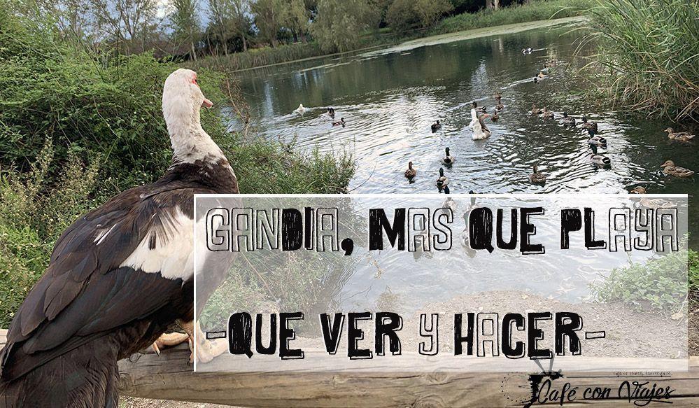 Gandía es mucho más que playa, qué ver y hacer en la ciudad valenciana