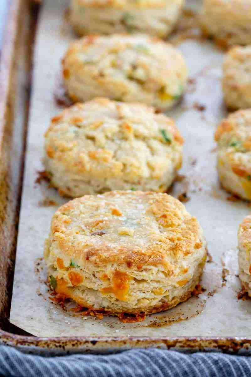 savory biscuits on a sheet tray straight out of the oven