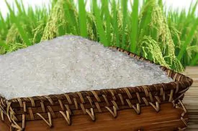 Thái Lan sẽ bán 1 triệu tấn gạo cho Trung Quốc