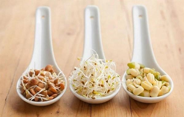 Ngũ cốc nảy mầm: Loại hạt thần kỳ với mức giá rẻ, biết chế biến sẽ có tác dụng cải thiện tiêu hóa, ngăn bệnh tim mạch và chống lão hóa - Ảnh 1.