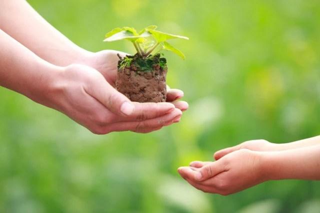 Điều gì là quan trọng nhất trong cuộc sống? Niềm vui hay nỗi buồn phụ thuộc vào tỷ lệ được mất mà bạn nhận được  - Ảnh 2.