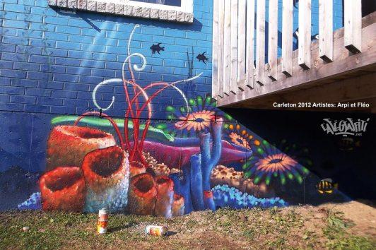carleton-affiche-murale-maison-des-jeunes-2