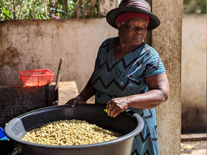 cafe kreyol coffee haiti farmers Savane Zombie 03