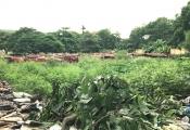 Hà Nội nói về đất đẹp xây nhà bán, trường học đẩy ra nghĩa trang, ao đình