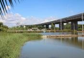 Sài Gòn trong cơn sốt đất