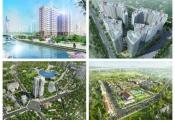 Dự án trong tuần: Công bố căn hộ Felisa Riverside và đất nền Bảo Lộc Golden City