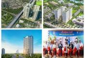 Dự án trong tuần: Khởi công D. El Dorado II, động thổ HQC Hòa Phú và ra mắt căn hộ Orchid Park