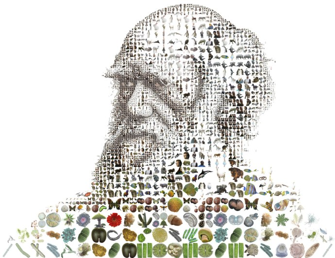 'Charles Darwin for Time Magazine' by Charis Tsevis