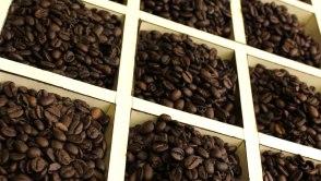 Resultado de imagem para botucatu industria cafe tesouro
