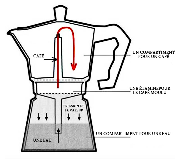 cafetiere italienne induction top 5