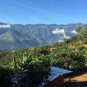 瓜地馬拉SanJacinto產區