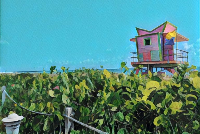 Read more about the article A First-Timer's Guide To Miami And The Florida Keys