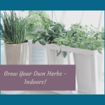 grow your own herbs, to grow herbs indoors