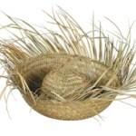 Who Gets to Wear My Straw Hat? Rick Santorum? Tim Pawlenty? Michelle Bachmann?