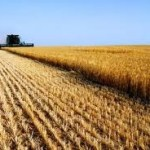 Grassley, Johnson Push for Legitimate Payment Limits in Upcoming Farm Bill Discussion