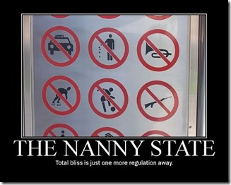 1e95232a_nanny-state