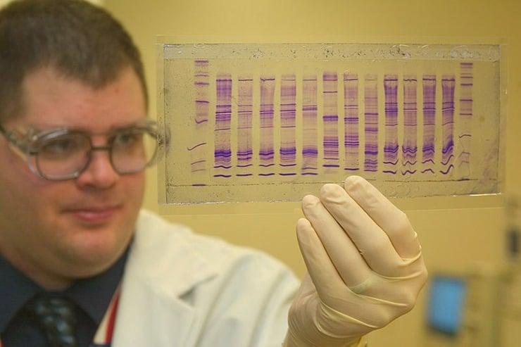 800px-CBP_chemist_reads_a_DNA_profile
