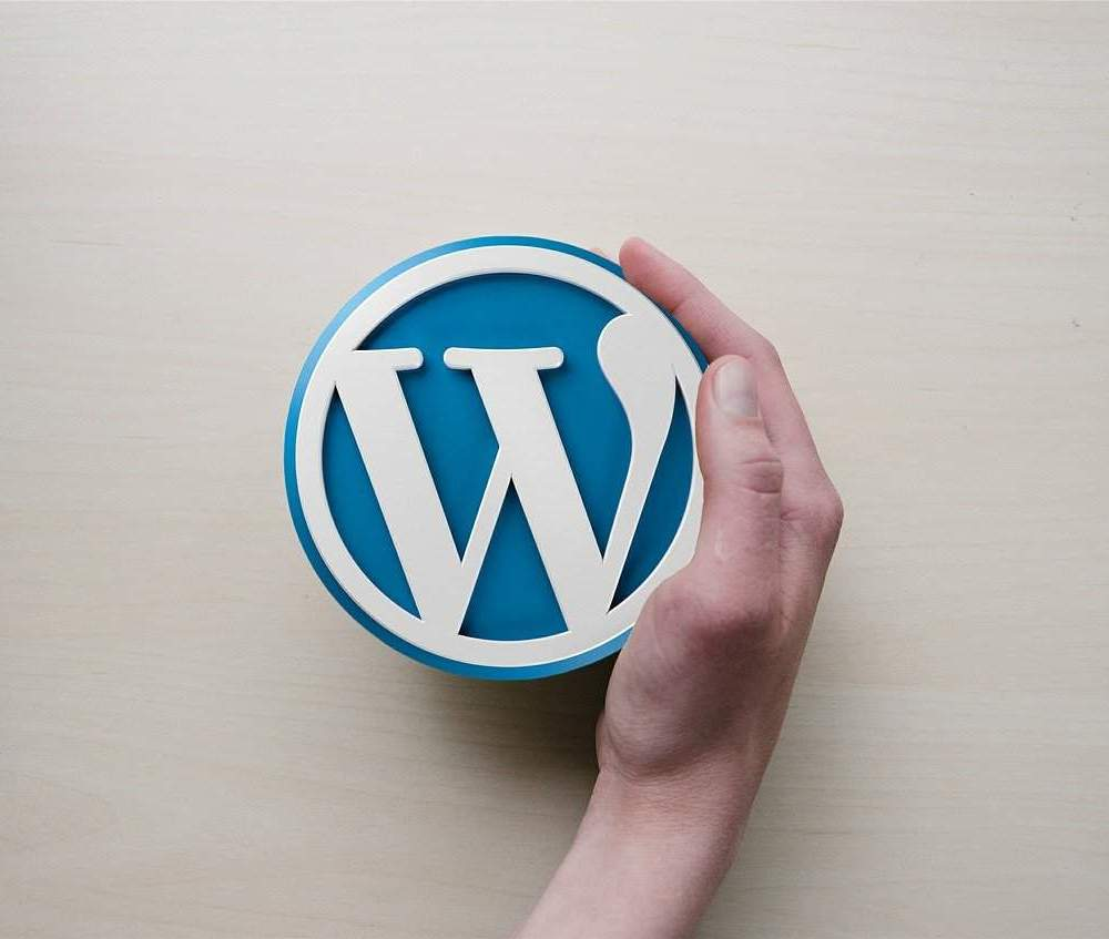 A vector graphic photograph of a hand holding the self-hosted Wordpress symbol