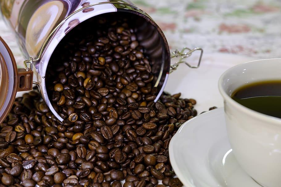 coffee supplier