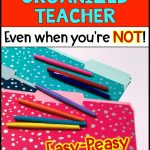 ook-like-an-organized-teacher-files-pin