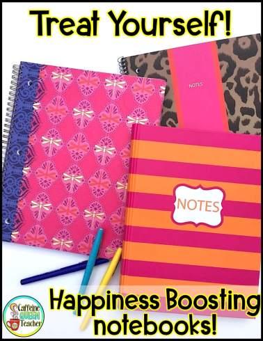 look-like-an-organized-teacher-with-fun-notebooks