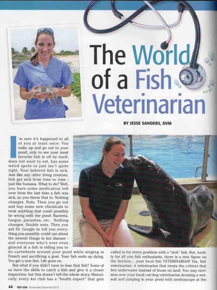 Article in KOI USA – The World of a Fish Vet
