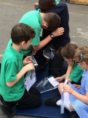 St Amand's primary On the Move activity June 2016h (960x1280)