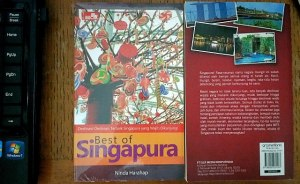 Cover Buku Best of Singapura
