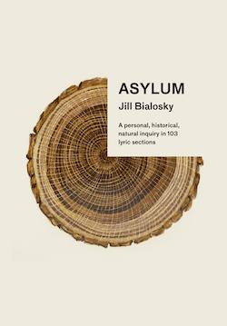 Asylum book cover 250w
